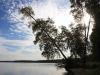 Рефтинский фото - Рефтинское водохранилище