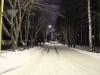 Рефтинский фото - Ночная дорога