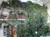 Рефтинский фото - Зимний сад в ДК