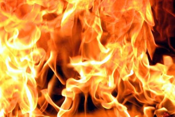 В Нижегородской области сгорела ферма, погибли телята