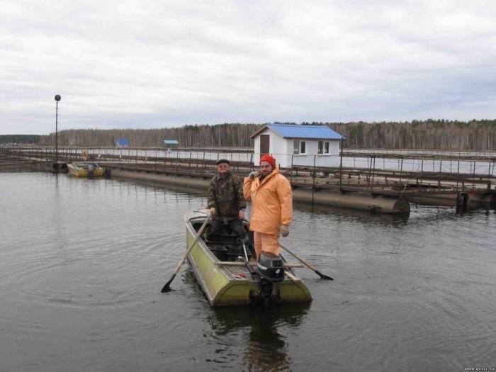 Исследование сырьевой базы на Рефтинском водохранилище