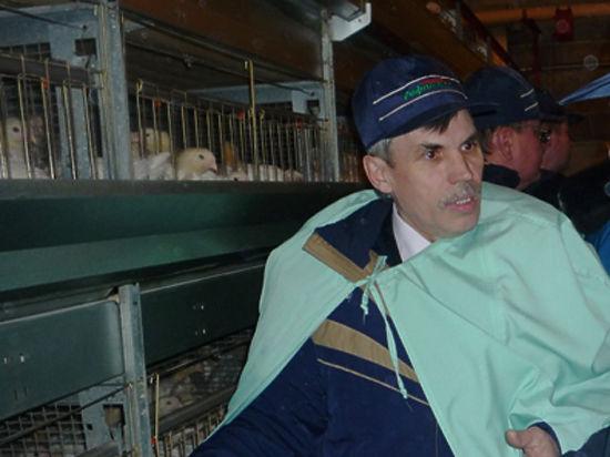 От птицефабрики останутся пух да перья
