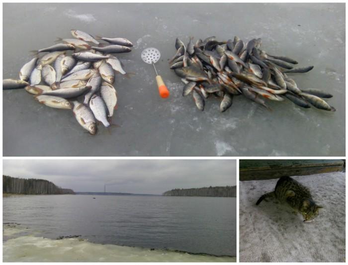 Отчет о рыбалке- 10.04.2016
